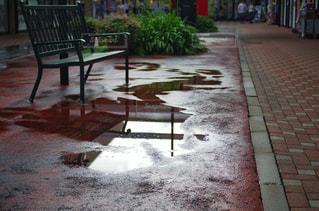 水たまりとベンチの写真・画像素材[2241322]