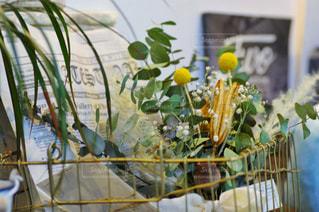 ユーカリとグラスペディアの花束の写真・画像素材[2852002]