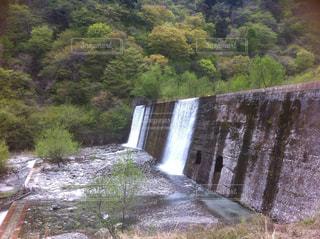 篠沢大滝キャンプ場の写真・画像素材[1007057]