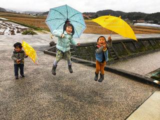 子ども,雨,傘,屋外,ジャンプ,飛ぶ,女の子,人,男の子,兄弟