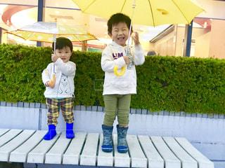 子ども,雨,傘,男の子,兄弟