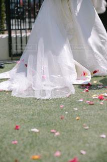 花,LOVE,赤,バラ,結婚式,ハート,ウェディングドレス,wedding,flower,フラワーシャワー