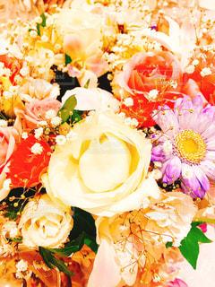 近くの花のアップの写真・画像素材[1229700]