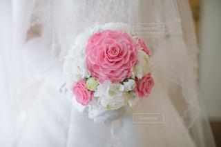 近くの花のアップの写真・画像素材[1371331]