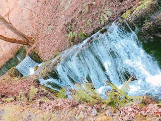 背景の木と滝の写真・画像素材[1685281]