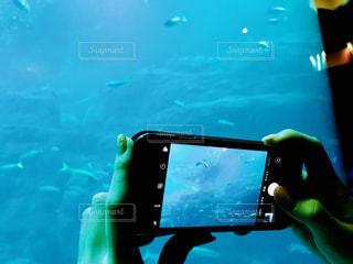 カメラ,青,水族館,スマホ,オシャレ,水中,休日,海底