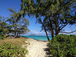 海,ビーチ,青空,砂浜,アメリカ,旅行,ハワイ,Hawaii,カイルア,カイルアビーチ
