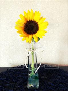 ひまわり,花瓶,リボン,一輪挿し