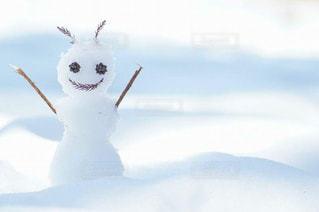 雪の妖精さんの写真・画像素材[1732191]