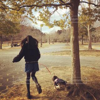 公園でお散歩🐶の写真・画像素材[1025265]