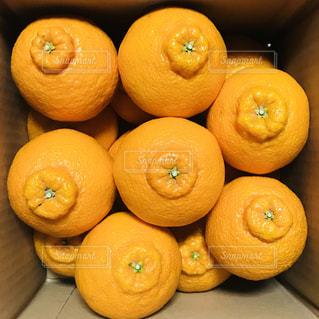 テーブルの上に座ってオレンジの山の写真・画像素材[1079819]