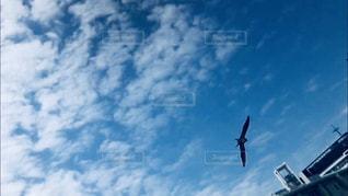 曇りの青い空を飛んでいる飛行機の写真・画像素材[1402099]