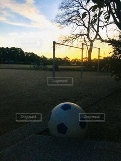 空,屋外,太陽,光,樹木,ボール,サッカー,遊び場,日中