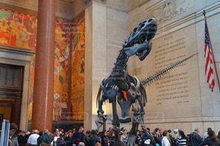 ニューヨーク,アメリカ,恐竜,New York,アメリカ自然史博物館