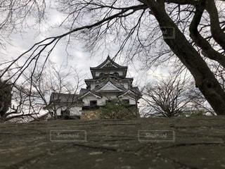 彦根城だの写真・画像素材[1052543]