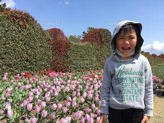 風景,空,公園,春,ピンク,緑,赤,青,チューリップ,樹木