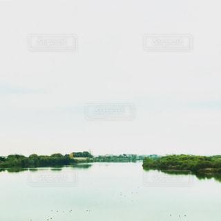 木,景色,Sky,nature