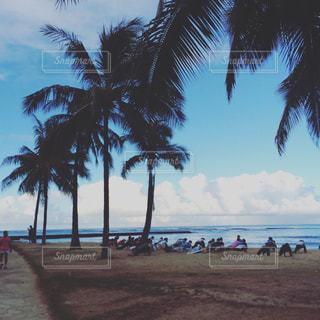 海,海外,ビーチ,ランニング,ハワイ,休日,朝活