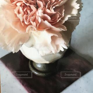 近くの花のアップの写真・画像素材[1178930]