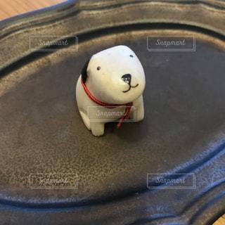 犬の写真・画像素材[1197579]