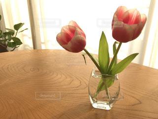 花の写真・画像素材[1996808]