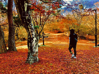 木の隣に立っている男の写真・画像素材[1709849]