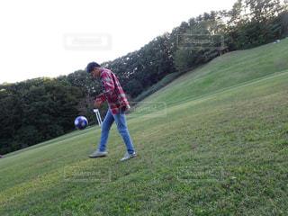自然,公園,緑,男,ピクニック,サッカー,遊び