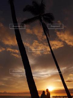 風景,夕日,海外,アメリカ,オレンジ,観光,旅行,夫婦,ヤシの木,ハワイ,フォトジェニック,インスタ映え