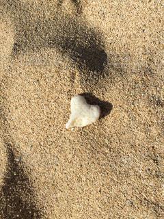 サンゴ,砂浜,ハート,ハワイ,オアフ島