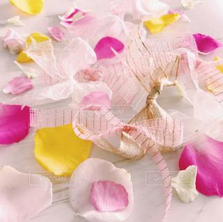 ピンク,かわいい,カラフル,バラ,花びら,女の子,リボン,夢,乙女,りぼん