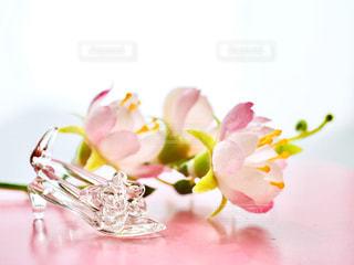 ピンク,かわいい,きれい,綺麗,夢,ピンク色,シンデレラ,桃色,憧れ,ガラスの靴