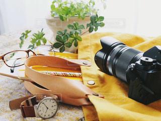 カメラと一緒の写真・画像素材[1663220]
