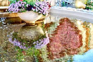 花,ピンク,かわいい,きれい,観光,ハート,愛知県,マーク,蒲郡,ラグーナテンボス,フラワーラグーン,リフレ