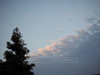 明日天気になあれの写真・画像素材[2998091]
