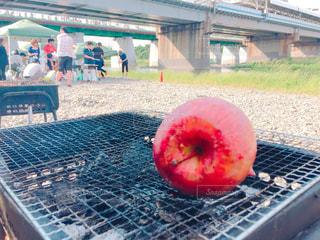 網の上の赤いりんごの写真・画像素材[1214097]