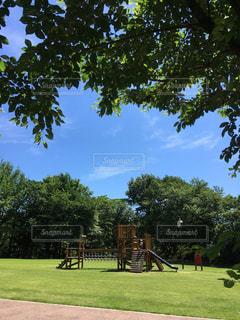 公園の人々 のグループの写真・画像素材[1181582]