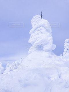 樹氷の写真・画像素材[1026605]