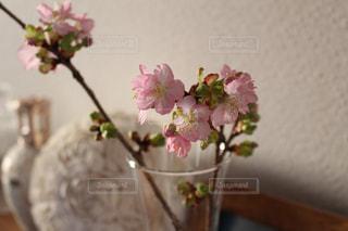 紫色の花一杯の花瓶の写真・画像素材[1368697]