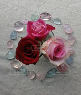 花と石の輪の写真・画像素材[1589221]