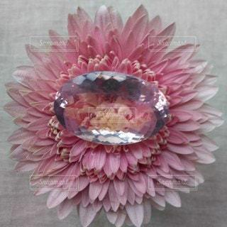 テーブルの上のピンクの花と石の写真・画像素材[2137470]