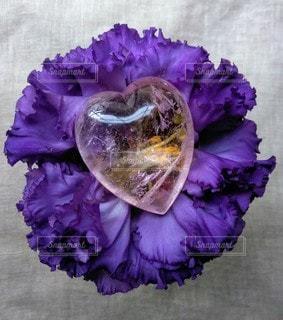 花,ピンク,フラワー,紫,ハート,俯瞰,天然石,草木,ストーン,クリスタル,モルガナイト,ヴァイオレット,ストーンフラワー