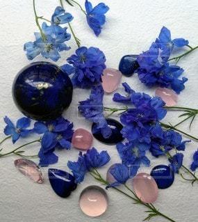 ラピスラズリの花の写真・画像素材[2284194]