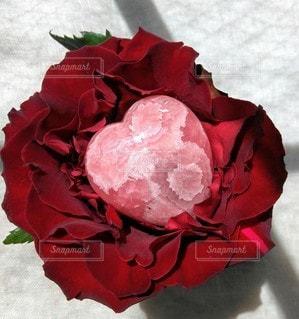 花,赤,バラ,薔薇,ハート,ローズ,レッド,天然石,草木,ストーン,クリスタル,ばら,ロードクロサイト,ストーンフラワー