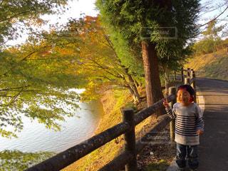 紅葉の水面で。の写真・画像素材[1024616]