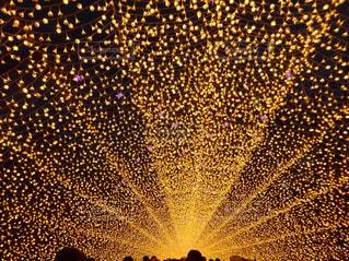 光のトンネルの写真・画像素材[1023066]