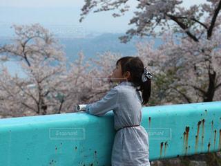 琵琶湖を眺めての写真・画像素材[1149441]