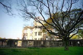 家の前に大きな木の写真・画像素材[1027678]