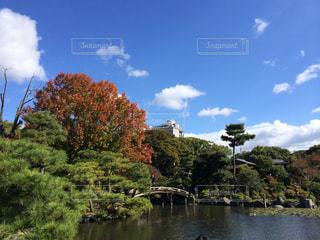 空,秋,紅葉,京都,もみじ,秋の空,京都市,渉成園,枳殻邸