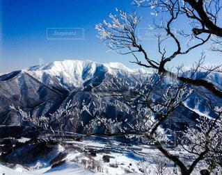 雪山と樹氷の写真・画像素材[1031898]