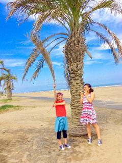 ビーチでヤシの木の横に立っている人の写真・画像素材[1051179]